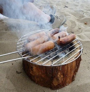 EcoGrill barbecue