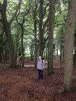 wood walk